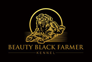 Beauty Black Farmer
